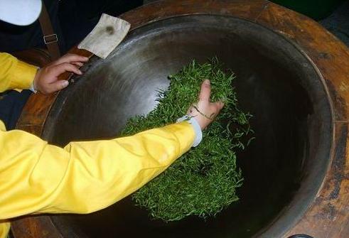 杭州龙井茶炒制时为啥要放蜡粉?