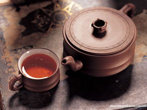 泡普洱生茶用什么茶壶适合?