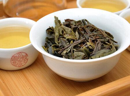 生普洱茶多酚含量