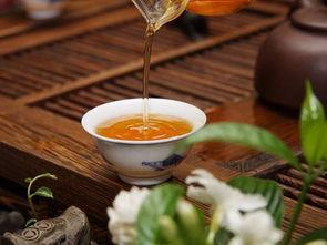 生普洱茶汤