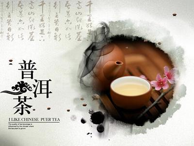 普洱生茶 价格