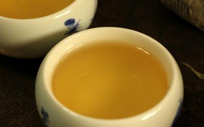 云南普洱茶之普洱生茶