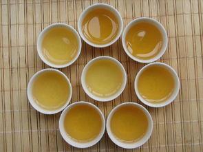 生普洱茶怎么喝减肥快呢?