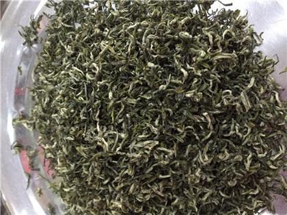 山东日照绿茶市场价