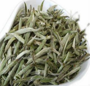 老白茶多少钱一斤