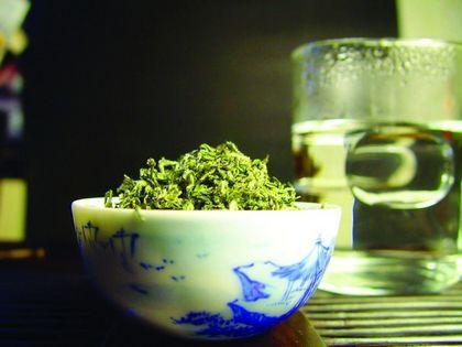 道家养生茶不可信 却独爱崂山绿茶