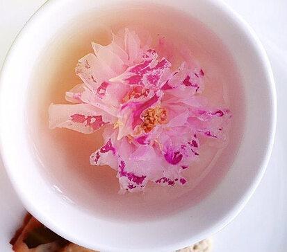 洛施玫瑰花茶怎么样