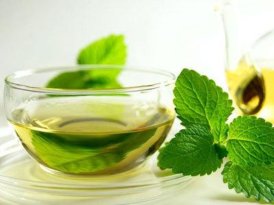 什么是日照绿茶