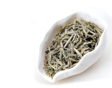 白茶的香气特点是
