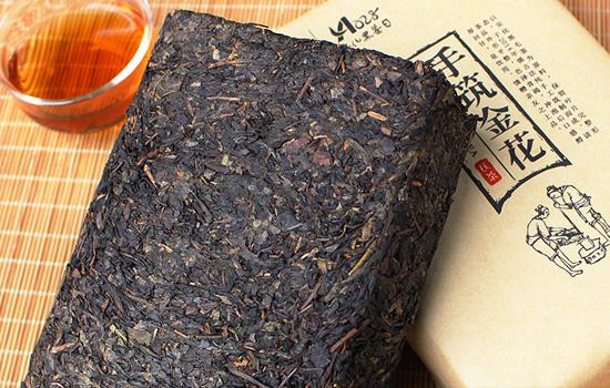 胃不好可以喝安化黑茶